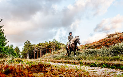 Danish woman riding horse in Thy woods, Denmark 29