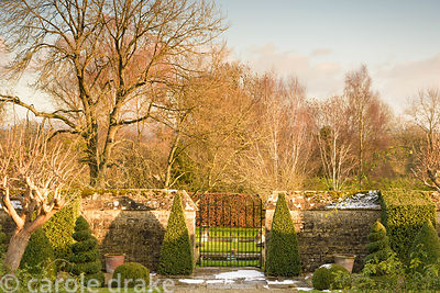 Clipped box pyramids frame a gate opening into the the adjoining field at Bourton House in the Cotswolds on a snowy January day