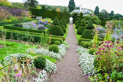 Sloping walled garden features topiary inspired by that at Lytes Carey in Somerset, with beds and path laid out to Voysey's o...