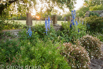 Border planted wtih delphiniums and potentillas with stone wall decorated wtih finials behind and fields beyond. Whalton Mano...