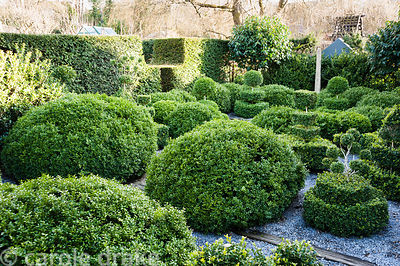 A topiary garden filled with low clipped box bushes surrounded by gravel, a slender standing stone and standard Portugese lau...