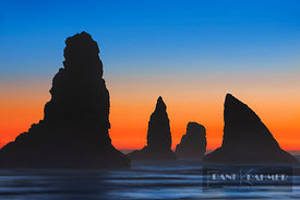 Coast landscape with bizarre rocks - North America, USA, Oregon, Curry, Samuel H. Boardman Scenic Corridor, China Beach - dig...