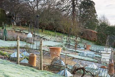 Formal vegetable garden at the Old Rectory, Netherbury in January with glass cloches, terracotta pots and metal obelisks surr...