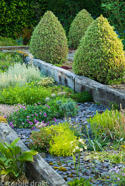 Raised beds constructed with weathered railway sleepers contain planting mulched around with blue slate, and a path behind is...