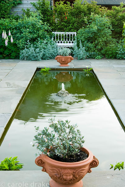 Formal pond with pots of Convolvulus cneorum at each end. Seat beyond is framed with Artemisia ludoviciana 'Valerie Finnis' a...