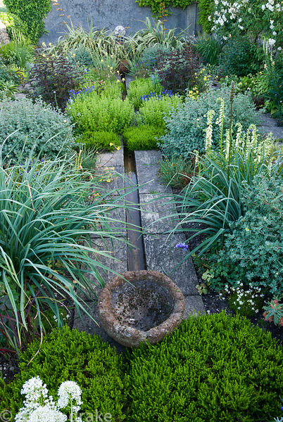 Planting around raised rill includes white winter heathers, shrubby potentilla, deep brown Lysimachia ciliata 'Firecracker', ...