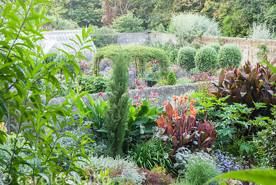 View across to the walled garden featuring standard olives and a central frame covered with Rosa banksiae. Haddon Lake House,...