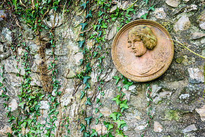 Decorative roundel with woman's bust on an ivy clad stone wall