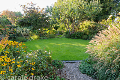 Sunlight spreads across the circular lawn in the back garden framed with and old apple tree, rudbeckias, Miscanthus sinensis ...
