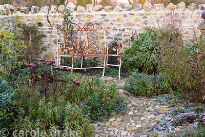 Rusty iron bench surrounded by frosty plants including sedums and geraniums