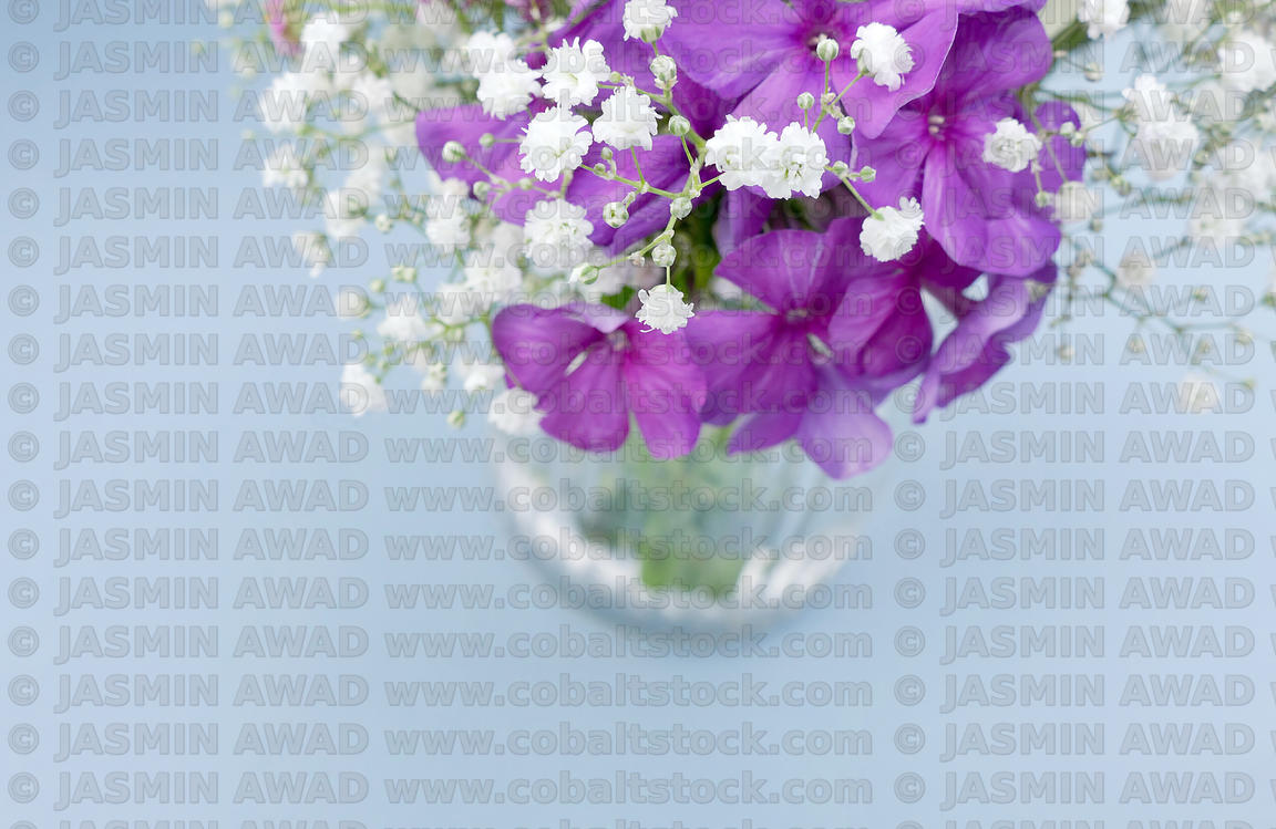 Purple blue and hwite flowers in a vase. High angle view with shallow DOF and copy space. Can be cut into a banner.