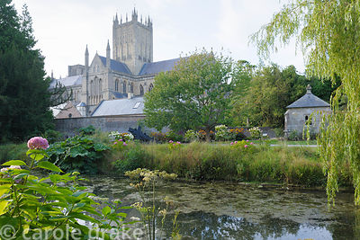 Wells Cathedral seen across the moat surround the grounds of the Bishop's Palace