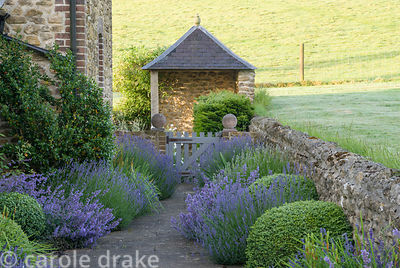 Path running between house and surrounding fields is softened by clumps of lavender, catmint, irises and clipped box with gaz...