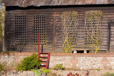 Barn with trellis panels attached to support climbers. Terstan, Stockbridge, Hants, UK