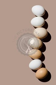 Chicken eggs on beige background copy space