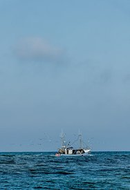 Fishing boats, Thorup Strand 2