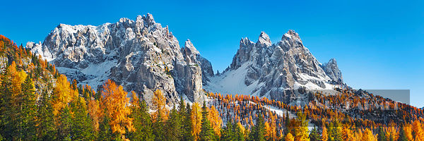 Mountain impression larch forest and Cadini di Misurina - Europe, Italy, Veneto, Belluno, Sexten Dolomites, Lago Antorno (Alp...
