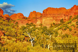Rock formation at Kings Canyon - Australia, Australia, Northern Territories, Watarrka National Park, Kings Canyon (Red Center...