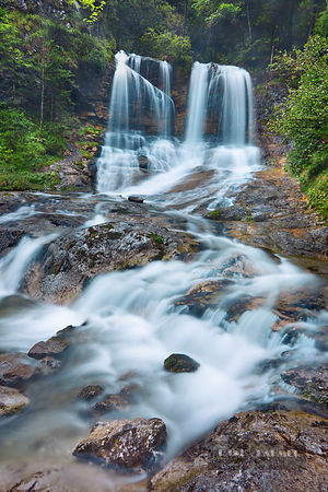 Waterfall in deciduous forest - Europe, Germany, Bavaria, Upper Bavaria, Traunstein, Inzell, Weissbach Falls - digital