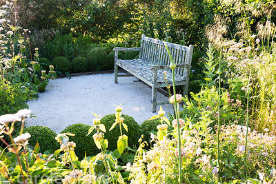 Lichened wooden bench in the ornamental garden is framed with clipped box surrounded by herbaceous perennials and grasses inc...