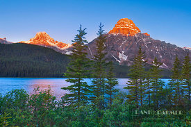 Mountain landscape at Waterfowl Lake with Mount Chephren - North America, Canada, Alberta, Banff National Park, Waterfowl Lak...