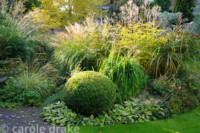 Circular pond in the front garden surrounded by varied shapes and textures of foliage including clipped box, grasses such as ...