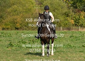 2020-09-20 KSB Aldhurst Farm Hound Exercise