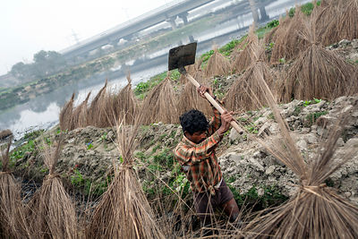 A man cultivates land by the Yamuna
