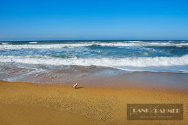 Ocean impression  - Australia, Australia, New South Wales, Coffs Harbour, Corindi Beach - digital