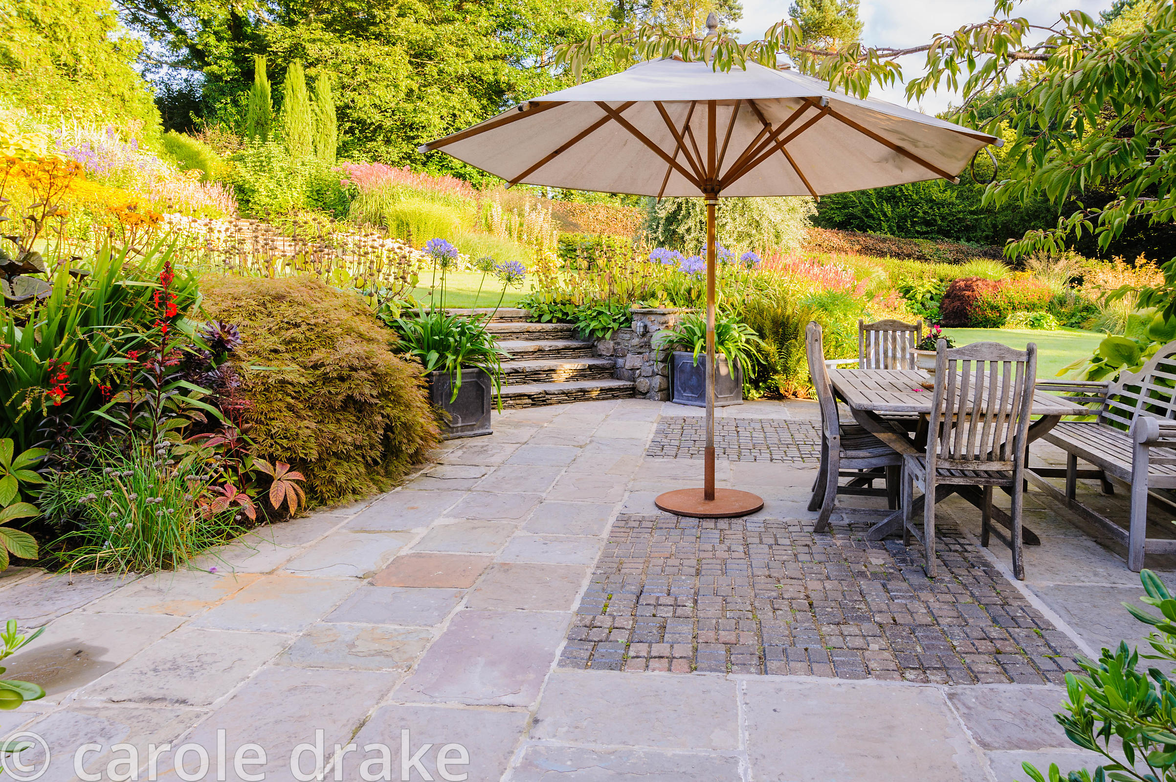 Terrace at the back of the house with dining area and umbrella framed by planting including acer, Lobelia cardinalis, agapant...