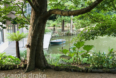 View down past mature oak and tree ferns to decking at the end of the lake where rowing boat is moored. Haddon Lake House, St...