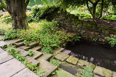 Steps leading down to a small formal pond seeded with hardy geraniums and ferns in York Gate Garden in July
