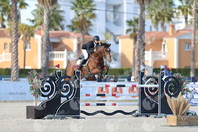 Oliva, Spain - 2019 November 17: Bronze tour 1m30 during CSI Mediterranean Equestrian Autumn Tour 2.(photo: 1clicphoto)