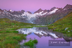 Mountain impression mountain lake with cottongrass in front of Oberaarhorn - Europe, Switzerland, Bern, Grimsel Pass, Oberaar...