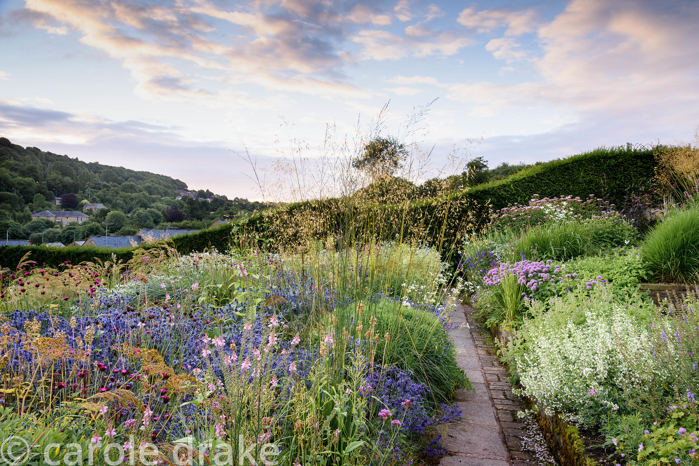 A path between beautifully planted borders featuring grasses such as Stipa calamagrostis, Stipa gigantea and panicum, and her...