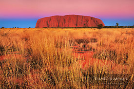 Ayers Rock at dusk - Australia, Australia, Northern Territories, Uluru-Kata-Tjuta National Park, Ayers Rock (Red Center, Outb...