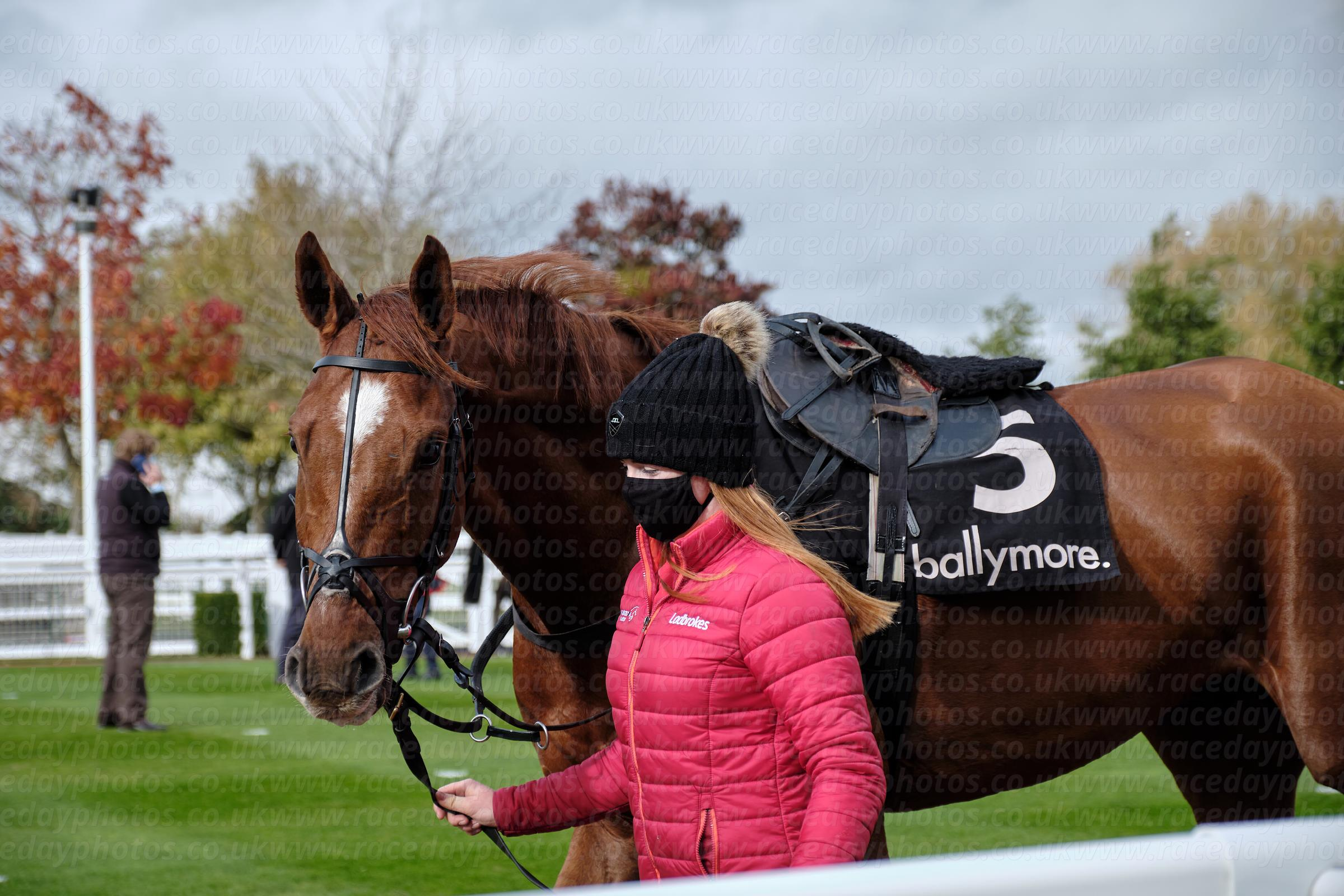 Cheltenham Showcase 23-10-2020