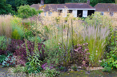 Circular bed planted with a variety of herbaceous perennials and grasses including Sedum telephium 'Purple Emperor', Erigeron...