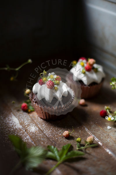 Chocolate cupcakes with wild strawberries