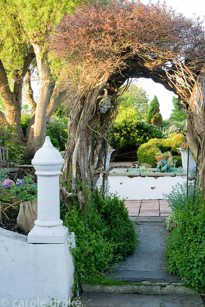 Wooden archway made from the remains of a conifer hedge marks the change from one part of the garden to another while support...