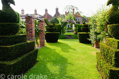 Yew topiary in the form of peacocks and swans. Felley Priory, Underwood, Notts, UK