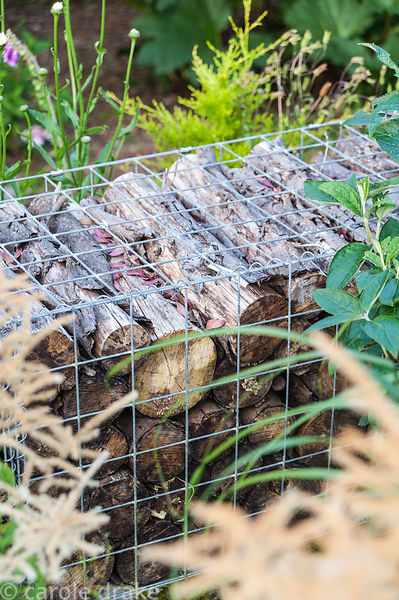 Log filled gabions are used to create low walls that separate one area of the garden from another. The 'Garten' Garden, Lower...