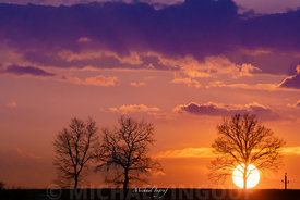 chateauneuf_trois_arbre_soleil_pose_equilibre_sunset_72