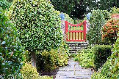 Path leading to a red painted gate passes evergreens including Portugese laurel, yew, box, holly and pyracantha at Broadwoods...