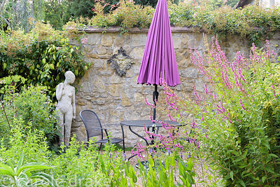 Seating area with purple umbrella and Lythrum salicaria at Five Oaks Cottage in July