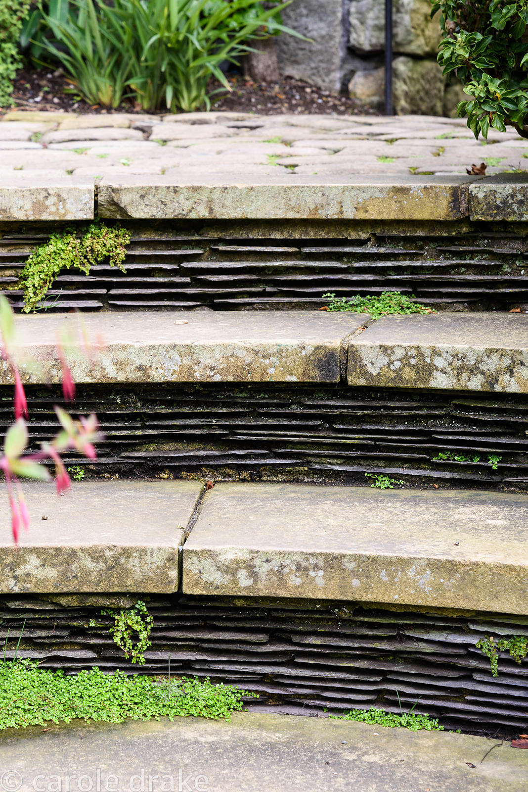Risers made from pieces of slate in steps at York Gate Garden, Adel in July