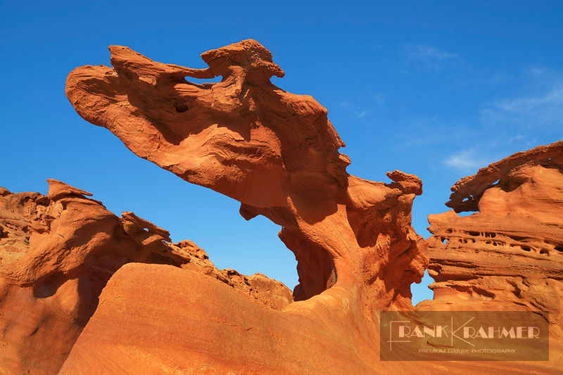 Sandstone erosion landscape in Little Finland - North America, USA, Nevada, Clark, Little Finland - digital