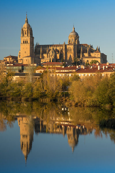 IMGP2133: Spain, Castilla y León: Salamanca, the cathedral