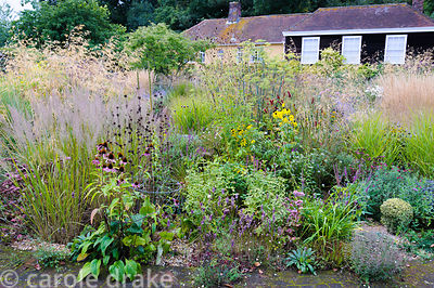 Circular bed planted with a variety of herbaceous perennials and grasses including echinaceas, phlomis, Calamagrostis brachyt...