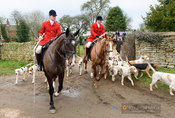 Huntsman and hounds leaving the meet. The Cottesmore Hunt at Wymondham 11/1